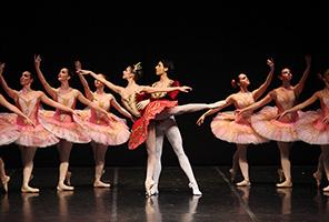 Ballet Clásico de Valencia